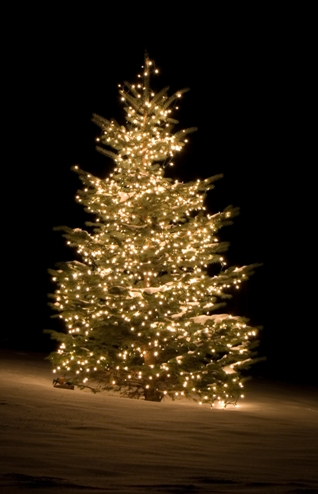 http://www.missiokids.nl/Christendom/images/Kerstboom_buitenverlichting.jpg
